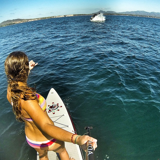 """Chasing whales is so """"FLUKING"""" awesome!!!"""