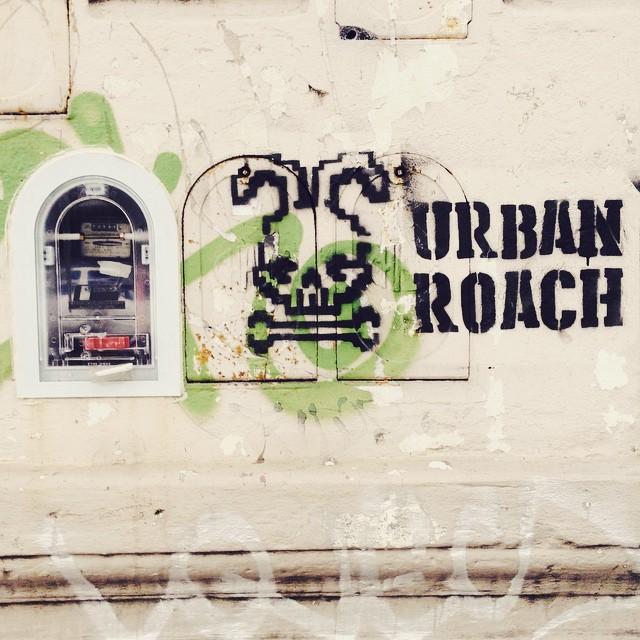 Stenciliando la ciudad, de la furia #stencil #bunny #arteurbano #spray #skull