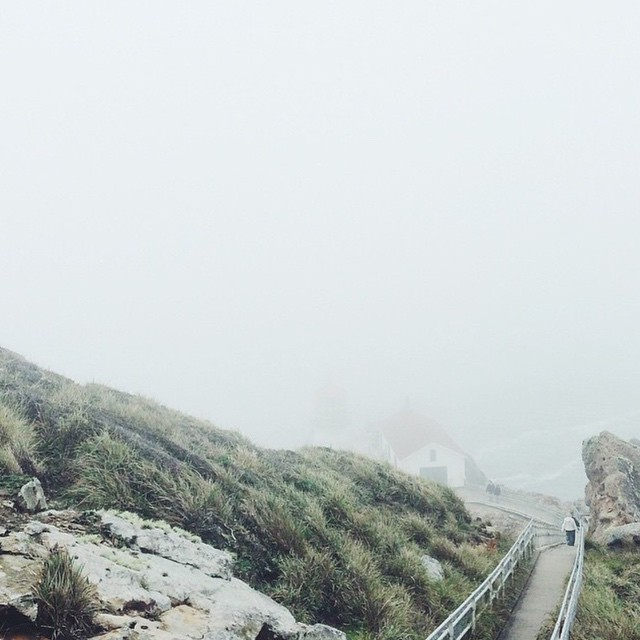 Point Reyes Lighthouse peeking through the fog by @torkologlu #radparks