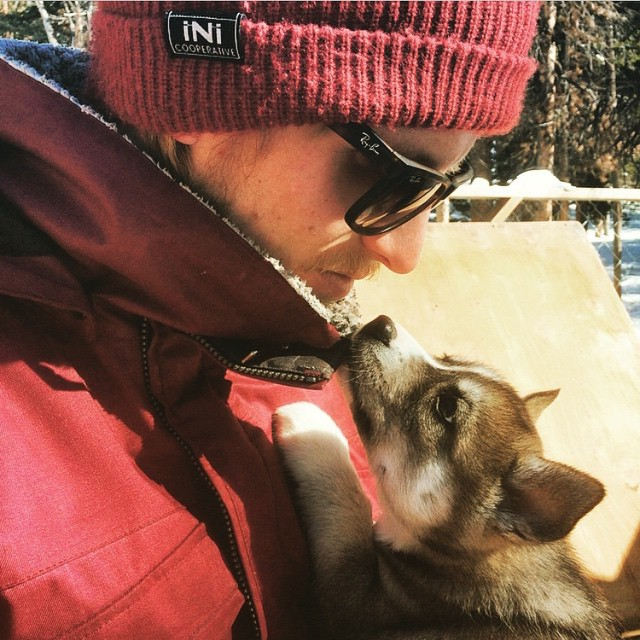 Love at first sight! Double tap if you love pooch's . #iNi | @artballa #regram #SiberianHusky