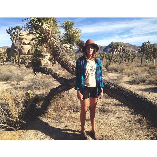 Thank you Joshua Tree for all the beauty the past couple days