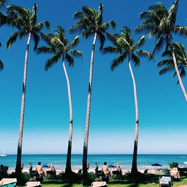 Feliz Domingo || Sunday Funday #miola #miolainthewild #muse #getoutthere #instagood #photooftheday #bikini #beachbabe #wanderlust #costarica #tamarindo #puravida #thisiscostarica #discovertamarindo #travel #sundayfunday #palmtree