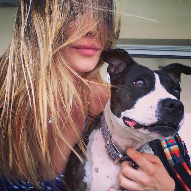 Yo en perra #DameUnBeso #Suyay #staffie #bull #dog #staffordshire #nordelta #home