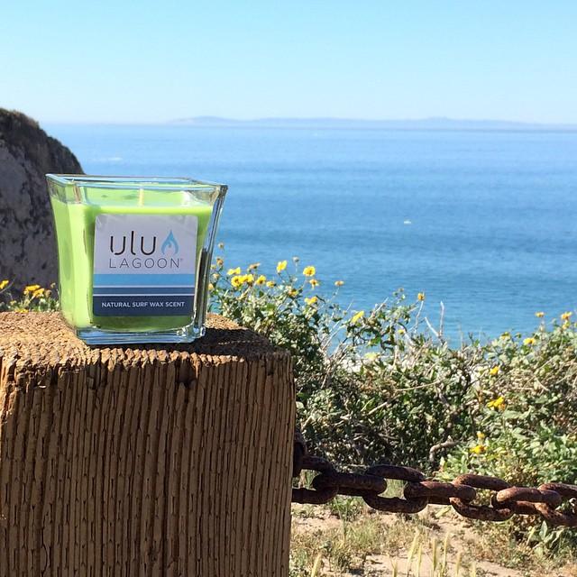 The 16oz green natural jar in its natural habitat. #uluLAGOON #newportcoast #surf #surfwaxcandles #thenewwave