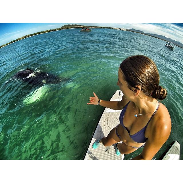 Whale whisperer ❤️