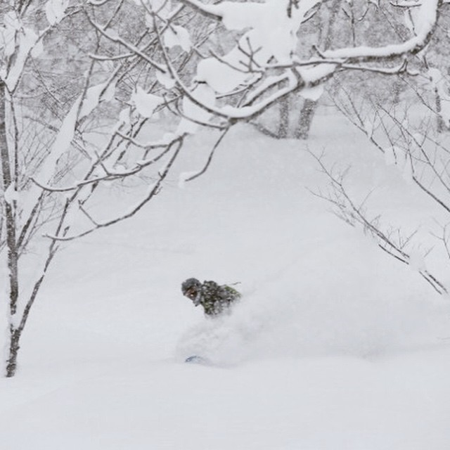 Toeside #powder turn in #niseko #backcountry last week. #snowboarding #powder4days #powderlife #sled #snow #parpowparadise