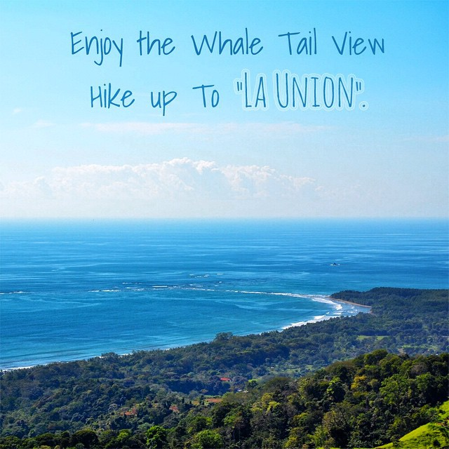 When in the #BahiaBallena #Uvita area on your #surf and #yoga #vacation, there are also a great many other activities you can do in your spare time! So we're starting #TravelTipTuesday, to give you some ideas. First up: seeing the whale tail from La...