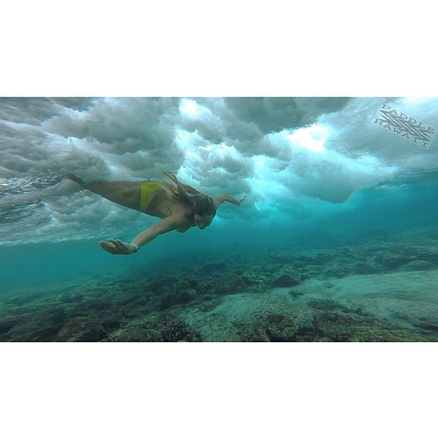 Out for a swim with the most graceful water creature I know @swellliving  #humpday #gopro #hero4 #odinasurf #ripcurl #artofboard #irideirecycle #teambioastin #rareform #organik #kaenon #lifeinhifi #wiseguides #konaboys #navitasnaturals #welovebioastin