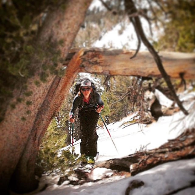 Regram from @desolationphoto; minimal snow coverage isn't stopping diehard ambassador @Jen nifer_violet from earning her turns! Beautiful hiking weather here in #Tahoe folks! Go find it!! Great shot Androo! #sisterhoodofshred #earnyourturns...