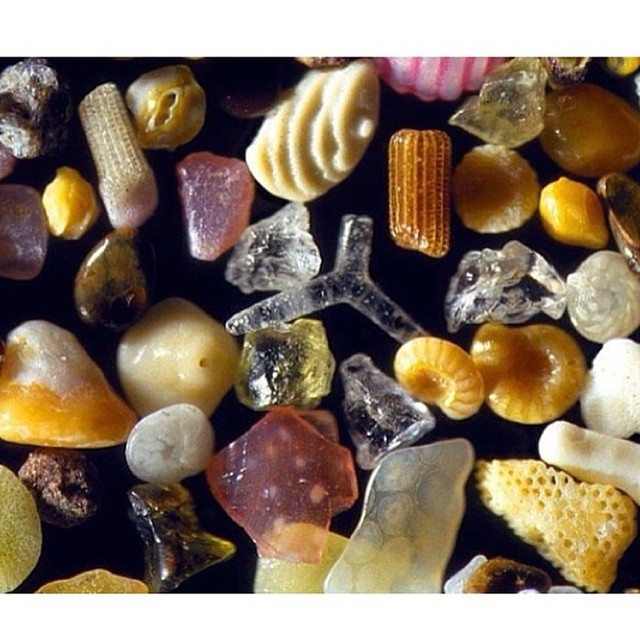 This is what sand looks like through the lens of a microscope. Change your perspective and whole worlds are revealed. Tiny wonders #AllSwell