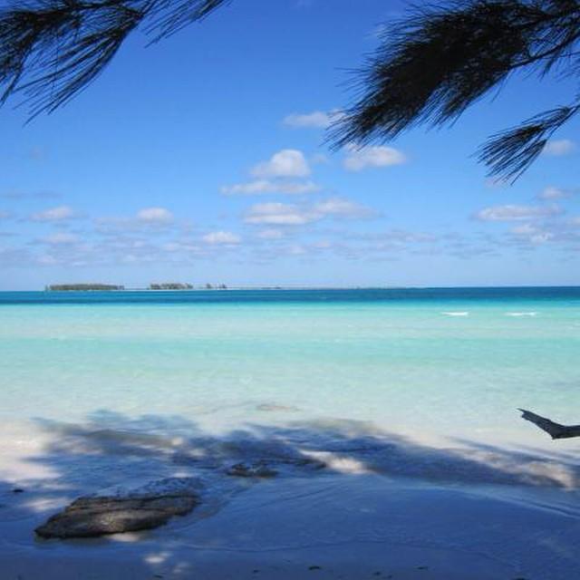 #ReefPlaya Playa Pilar, Cuba.- La Playa Pilar se ubica en Cayo Guillermo, uno de los Cayos de la provincia cubana de Ciego de Águila. Este hermoso sitio se presenta como una playa virgen, rodeada de dunas que alcanzan hasta los 16 metros de altura y...