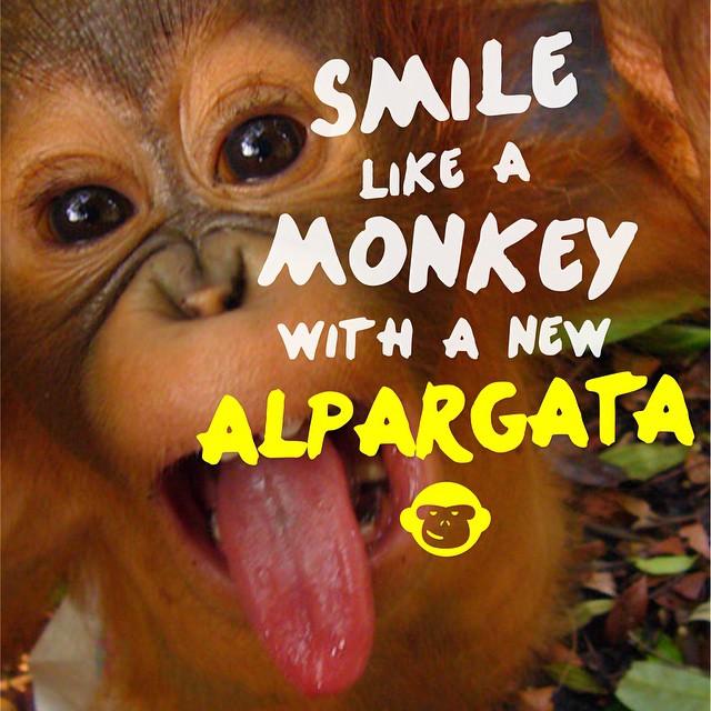 Viernes! Tiempo de pasarla bien con tus Black Monkey!!! @blackmonkeystore #alpargatas #calzado #argentina #blackmonkey #friday #enjoy #weekend #vacations #summertime #summer #live #free #trendy #onda #colores #confort #picoftheday #photooftheday #music...