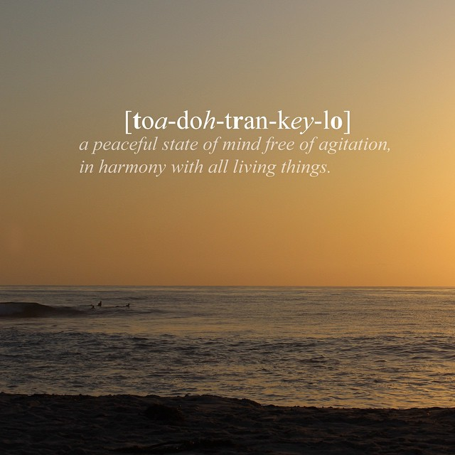 [toa-doh-tran-key-lo] a peaceful state of mind free of agitation, in harmony with all living things. #todotranquilocompany #todotranquilovibes #surf #thearts #yerbamate #innovativecollective #sandiego #california