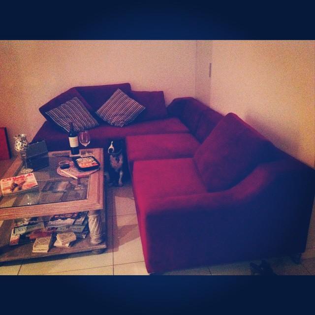 Situación más que ideal = Mi casa + Sillón + Sushi + Nieto Malbec + Suyay + Breaking Bad ..... #NoMolestar