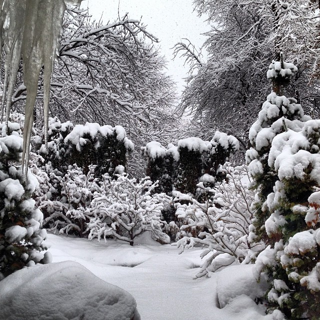 It's dumping in Salt Lake and the office is getting buried!