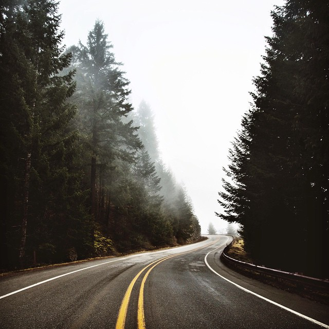 Morning drive is one of my favorite things to do. The moment when the morning fog is still blanketing the trees and no cars are around. What a great feeling. #NatureofProof  By @bertymandagie