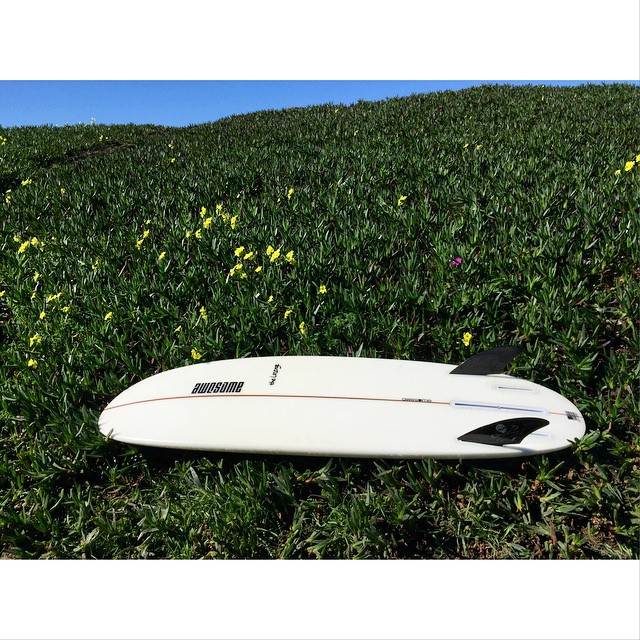 spring in february , OB #awesome #awesomesurfboards getting the super lozenge out #madeincalifornia #shredsleds #summerwaves#twin