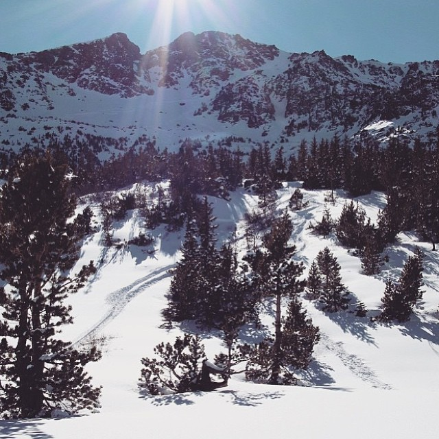 @nosnowsnakes knows backcountry #skiing is full of surprisises. #itsoutthere #gofindit #sisterhoodofshred #backcountryskiing