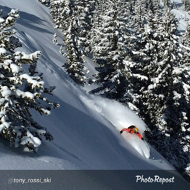 SR athlete @tony_rossi_ski finding that powder stash rocking the #44 #escher!