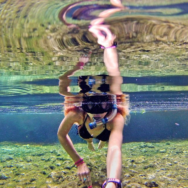"@jmadler's reflection at ""Mermaid Spring"" in Florida. #gopro #gopole #gopoleevo @waterlust"