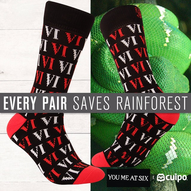 #SaveRainforest with these @YouMeAtSixOfficial limited edition #CuipoArtistSocks! #bandsocks #youmeatsix #ymas