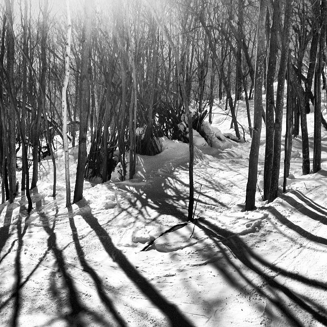 Awesome woods park today at @okemomtn @okemomountain #okemo #mountain #glades #gladespark #steezmagazine #snowboarding #vermont