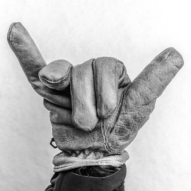 Hang Loose by @beefbrisket, check him out for some great photography