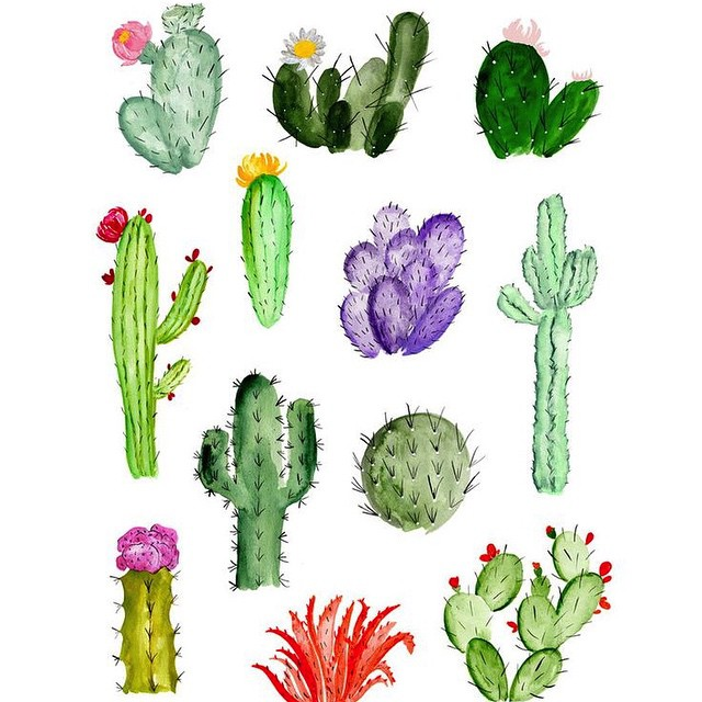Sketchbook inspiration #cacti #allswell