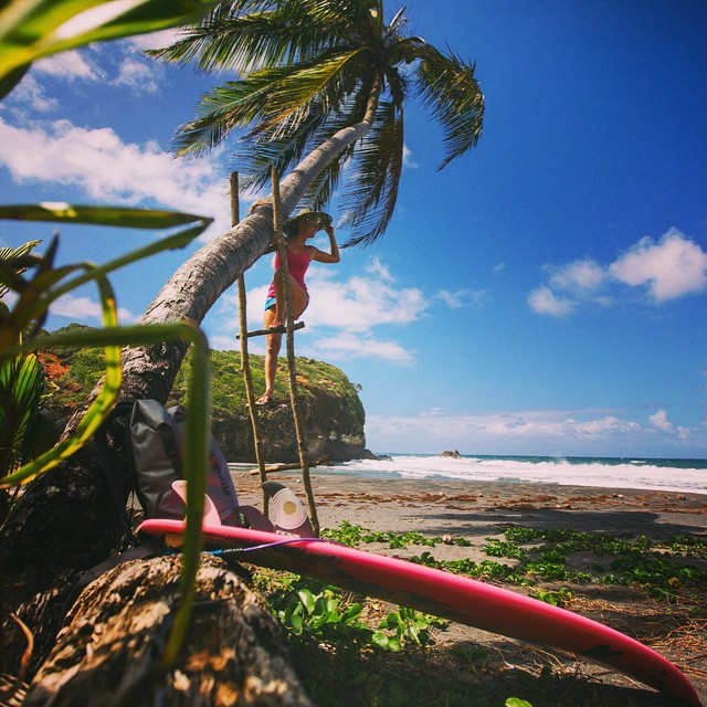 "Surf check! Journeyed through a thick palm grove to ""Beach Number One"" - where they came ashore in Pirates of the Caribbean - on a treasure hunt for waves!!!"