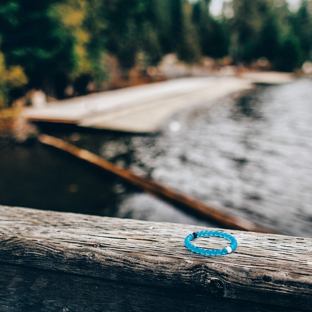 Go out on a limb #livelokai Thanks @bdorts