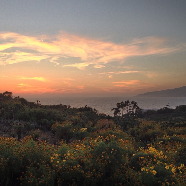 #iphone #hdr #nofilter ----- #photo #credit @stereosurf ------#adventuring through #malibu #sundayfunday #sunset