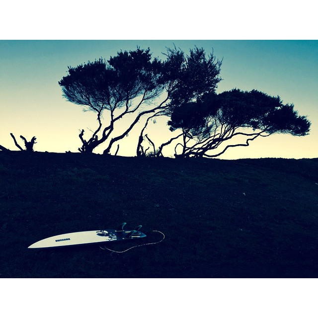 OB mornings #awesome#awesomesurfboards#OB#madeincalifornia#shredsled#shotwithiphone6