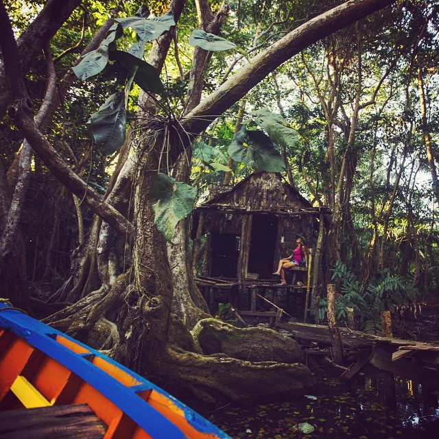 one of the crazy shacks they filmed in Pirates of the Caribbean, on the Indian River in Dominica.