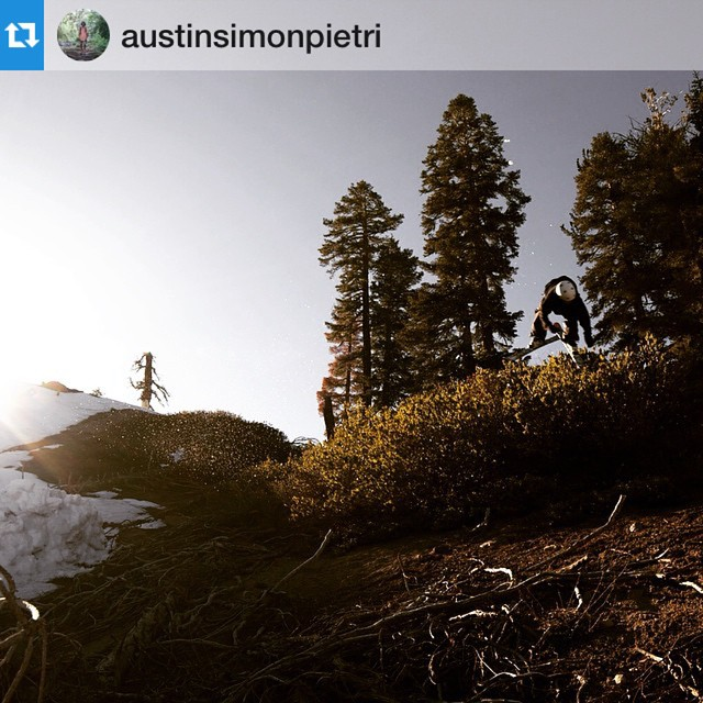 #Repost @austinsimonpietri ・・・