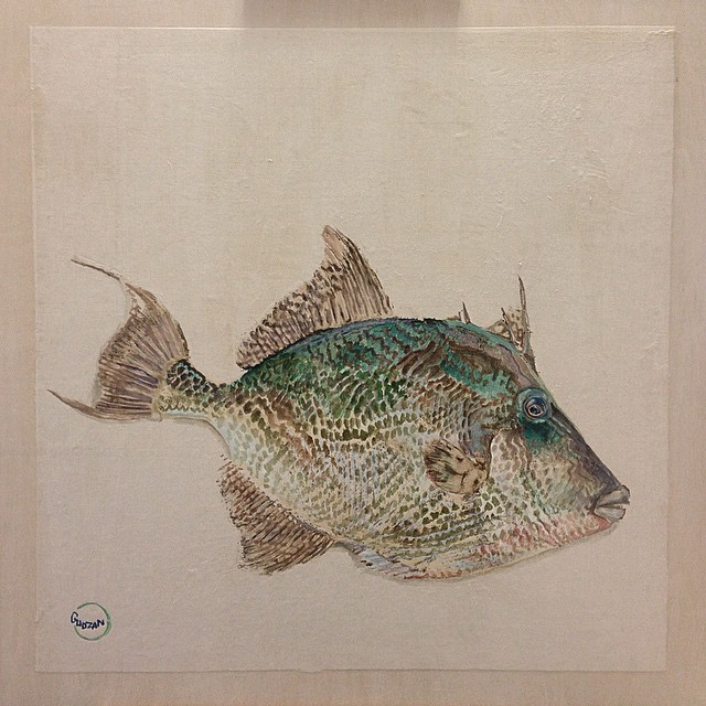 Pull the trigger! #triggerfish #gyotaku