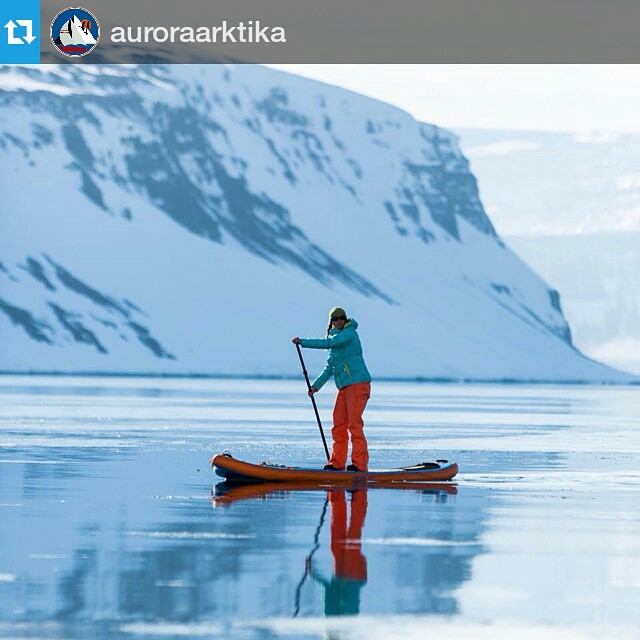 Thanks for the tag! #Repost of @auroraarktika paddleboarding in #iceland. ・・・ Some calm water Paddleboarding between ski turns. Photo: @gabe_rogel #westfjords #sup #fjord #halagear #halahoss #supeverydamnday #standuppaddle #stand_up_paddle...