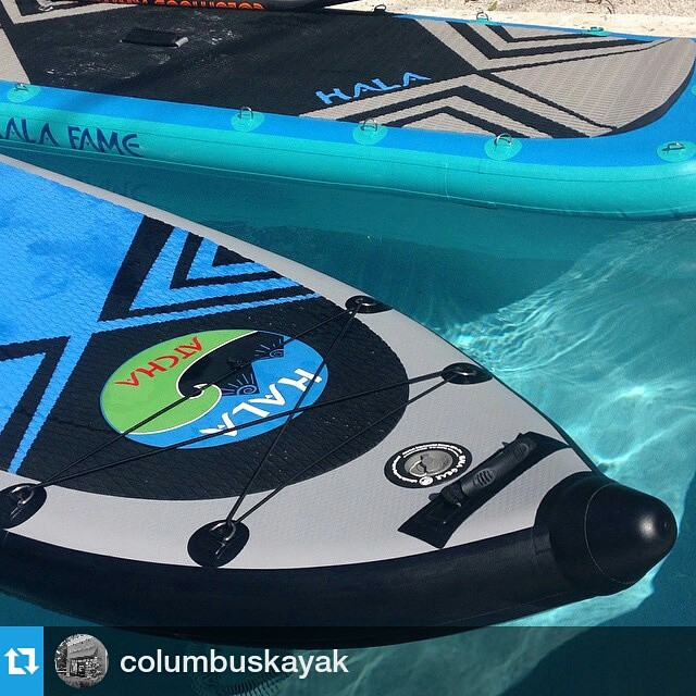 Thanks for the support @columbuskayak ! #Repost @columbuskayak ・・・ Halas in the pool. Good time to be in Florida. These things are amazing! #halagear #sup #columbuskayak #cbus #columbusohio #ohiogram #fla #ohio #halaatcha #halafame #adventuredesigned