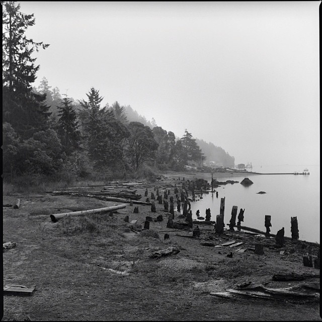 @muchnikphoto island life series in #issue29 #steezmagazine #mediumformat #film #blackandwhite