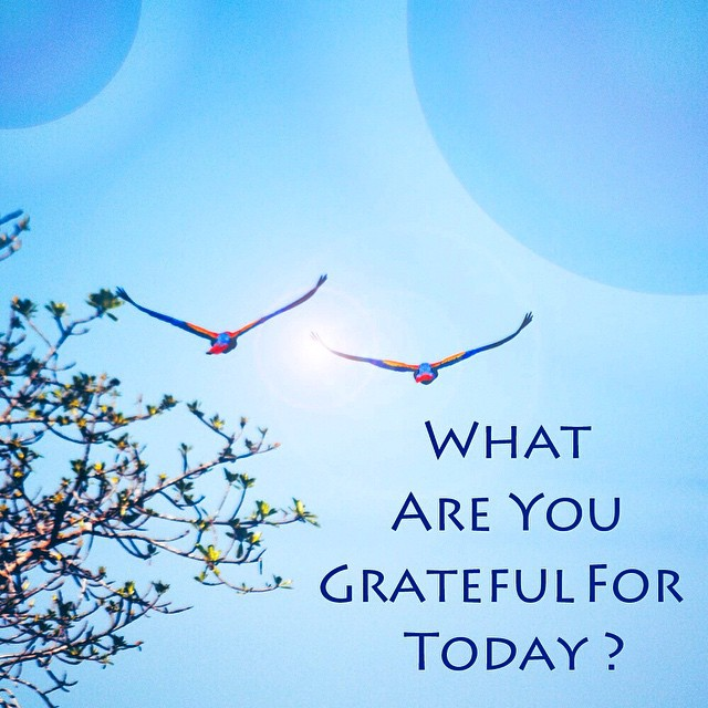 So many things! Sunshine, warmth, surfing awesome waves, practicing yoga, spending time with family and friends, meeting new and awesome people, BEING ALIVE! What are you thankful for? #ThankYouThursday
