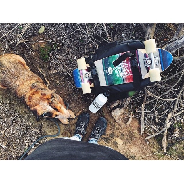 The OG backpack out in the wild. It's perfect for all your spring adventures with man's (or woman's) best friend! photo: @sk8namaste #concretenative #skatebackpack #longboardbackpack #adventurebackpack #skatelife #longboardlife #adventure #explore