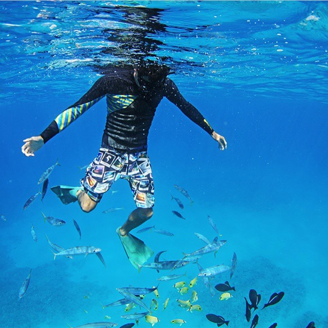 Even fish can't help but check out our boardshorts! Here's @manaphotohawaii, one of the 24 photographers featured on the Sandy Beach Collection shorts #inspiredboardshorts