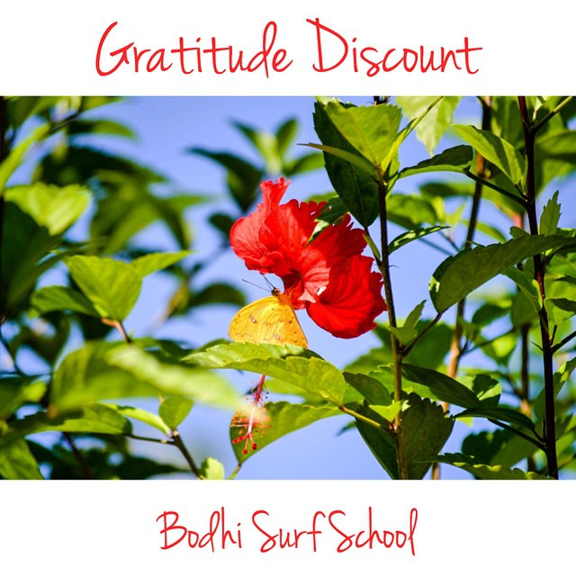 Two weeks left to take advantage of our big 25% discount off Bodhi Sessions, our surf and yoga camp option. This sale is good if you book from now until March 31st, and is valid for travel through August 29th, 2015. Share it far & wide! ☼☼☼☼☼