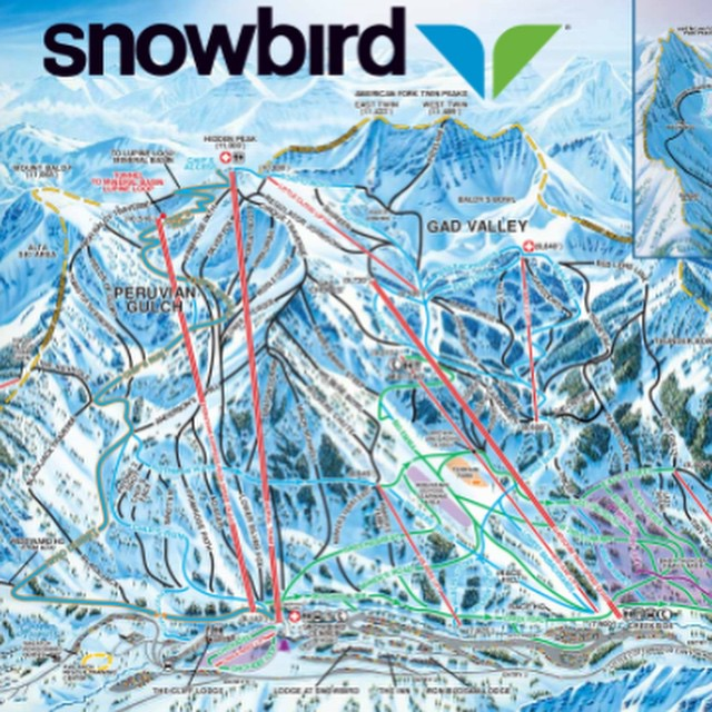 Less than 1 week til #snowbird UT and CO  #snowboarding adventure. #spring #snow #dontpanicitsorganik