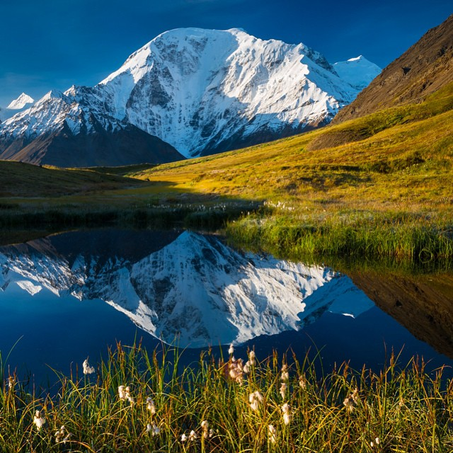 Mount Moffit reflection, Hayes Range, AK. This seldom climbed 13,018-foot peak is remote even by #Alaska standards. Our friend Carl Battreal took this photo as part of a monumental book project about the Alaska Range. Check out  @photographalaska to...