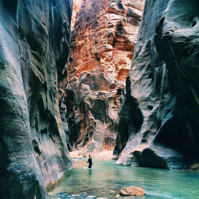 Navigating The Narrows in Zion National Park
