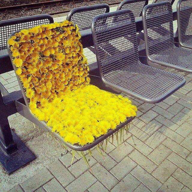 """""""Flower Power"""" Street Installation spotted in Munich, Germany #streetart #flowers"""