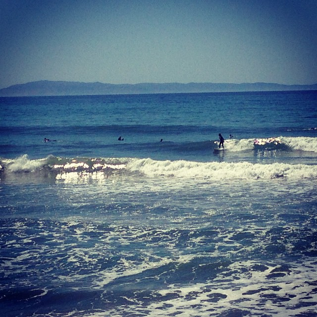 Fun windswell #ventura with #wavetribe
