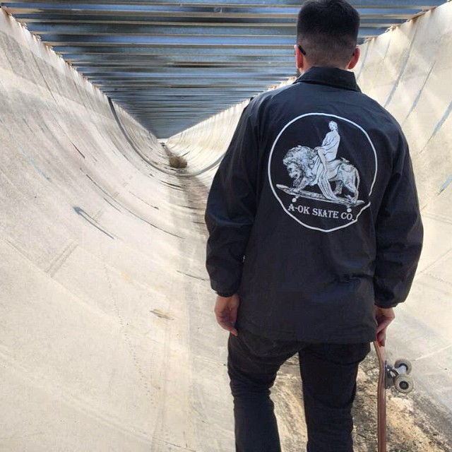 Regal Lion Coach Jacket || Now Available || Artwork By @brianlotti  www.aokskateco.com  #halfpike
