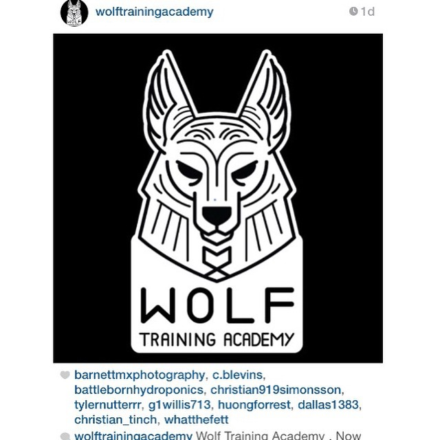 Go check the training page out! It needs some love and some likes! @wolftrainingacademy @wolftrainingacademy @wolftrainingacademy @wolftrainingacademy