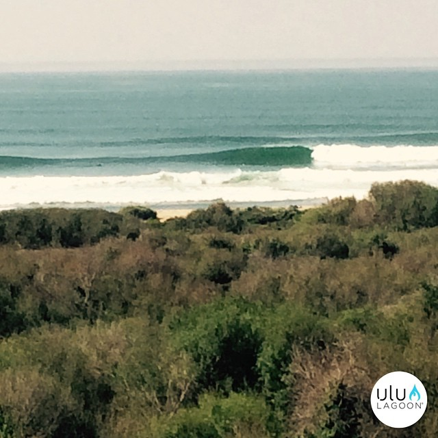 #NameThatSpot; Who can name the spot? Guess it on Instagram/Facebook, win a free air freshener. Go!  #uluLAGOON  #surf #surfing #surfer #instagood #awesome #beach